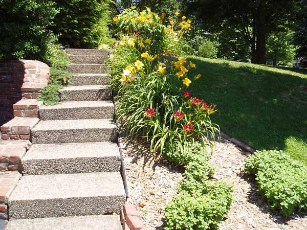 Front Steps