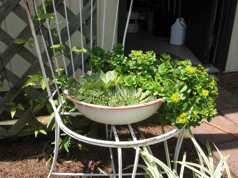 Washpan flower pot