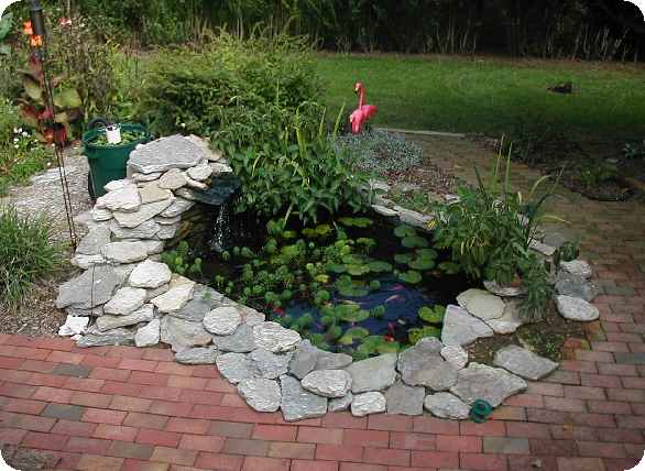 Ky dan 39 s flowers and goldfish pond 2004 for Building a goldfish pond